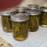 Canning – Dilly Beans