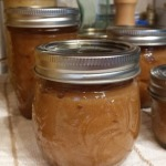 Canning – Apple Butter