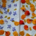 Flower Cheese