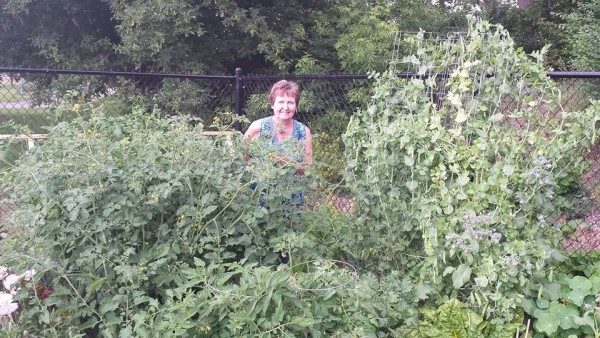July 6 Garden
