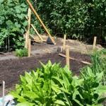 The July 22 Garden